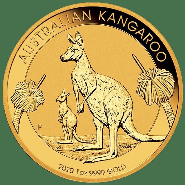2020 Gold Kangaroo Front
