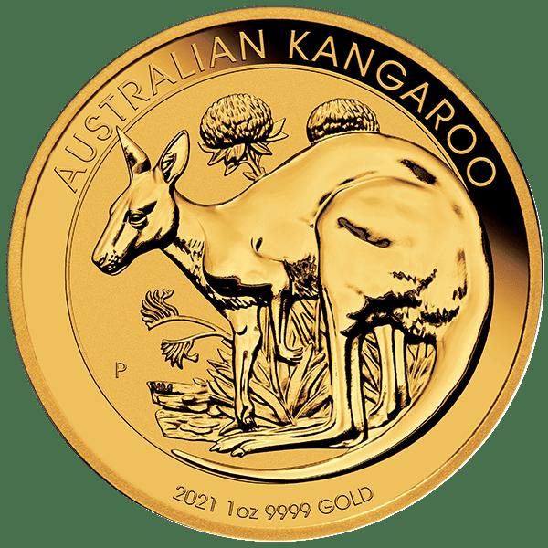 Gold Kangaroo Front